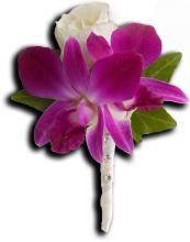 Fresh in Fuchsia Boutonniere