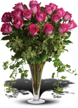 Dreaming in Pink - 18 Long Stemmed Premium Pink Roses